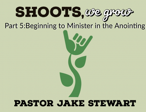 Shoots We Grow_Part 5 – Beginning to Minister in the Anointing