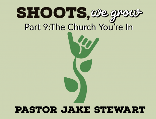 Shoots We Grow pt.9 – The Church You're In
