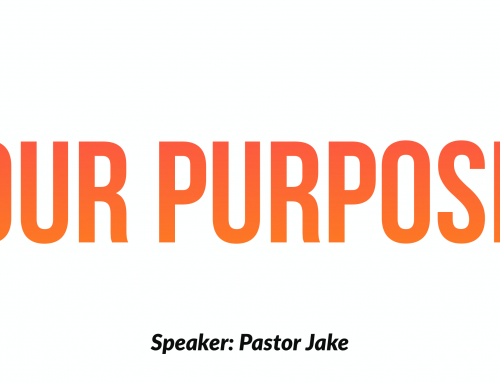 Our Purpose- Part 1 handout.pdf