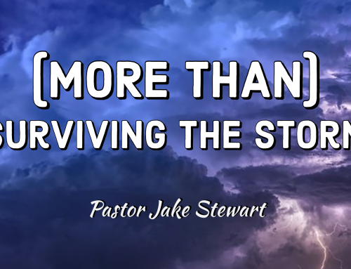 (More Than) Surviving the Storm